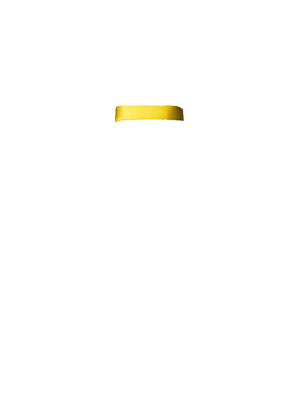 Amarelo Sol